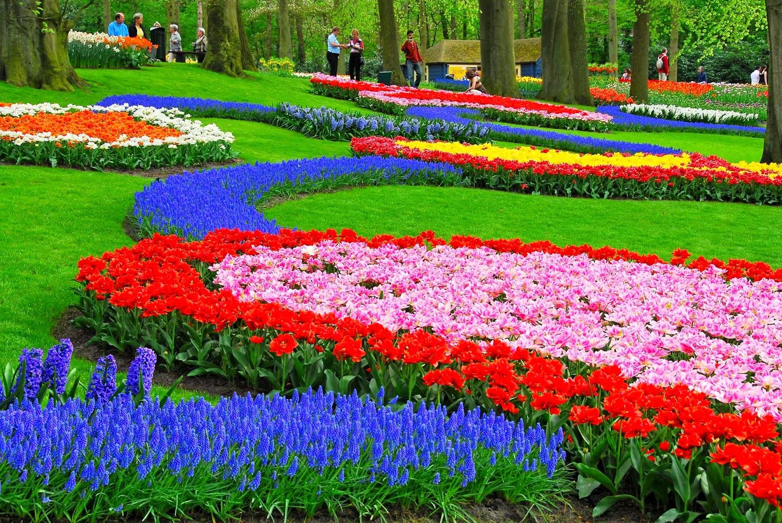Imagenes ethel imagenes de jardines mas hermosos del - Cosas del jardin ...