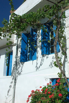 beautiful blue shutters