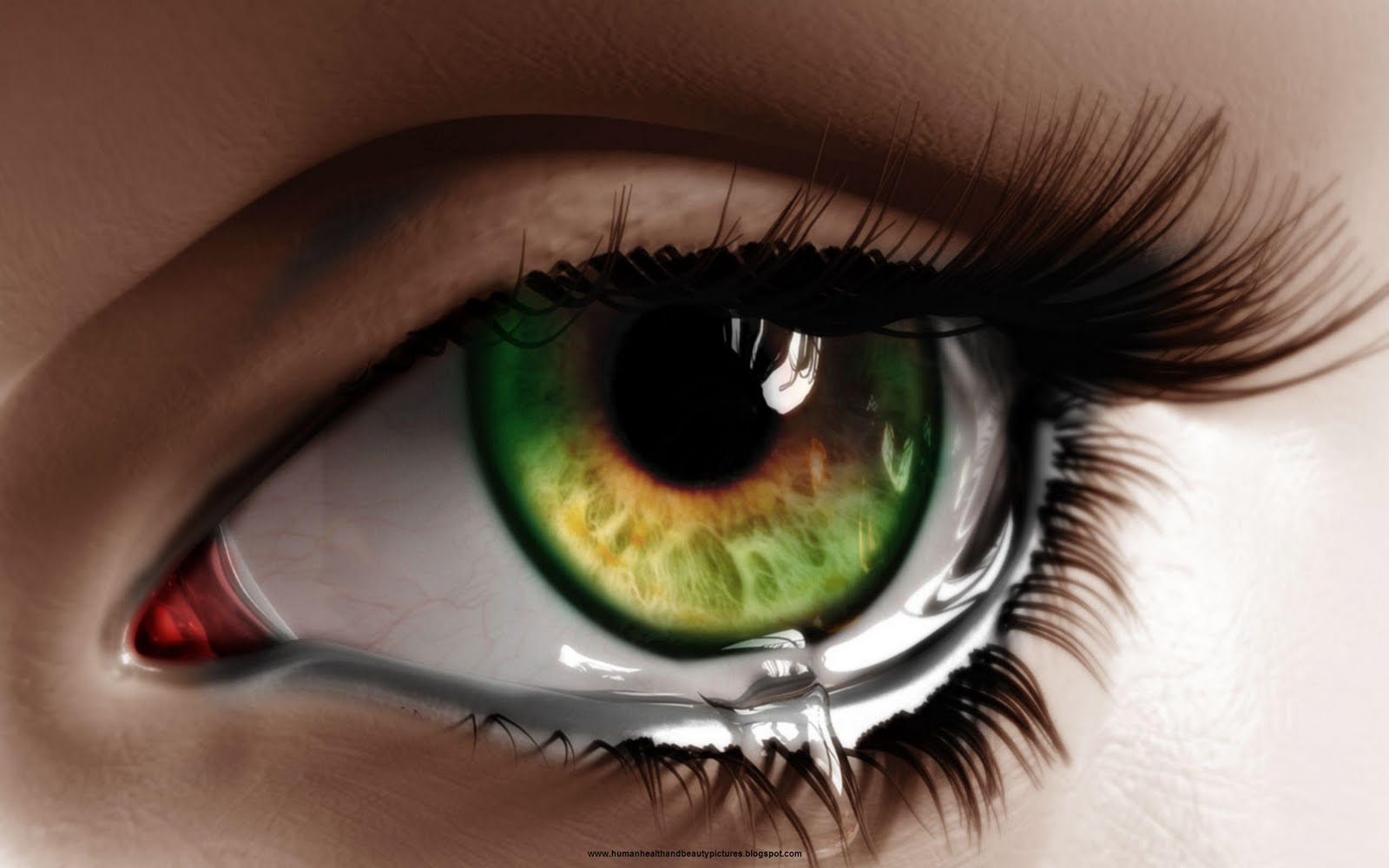 Love Eyes Hd Wallpaper : Beautiful Eyes New HD Wallpapres World Of HD Wallpapers