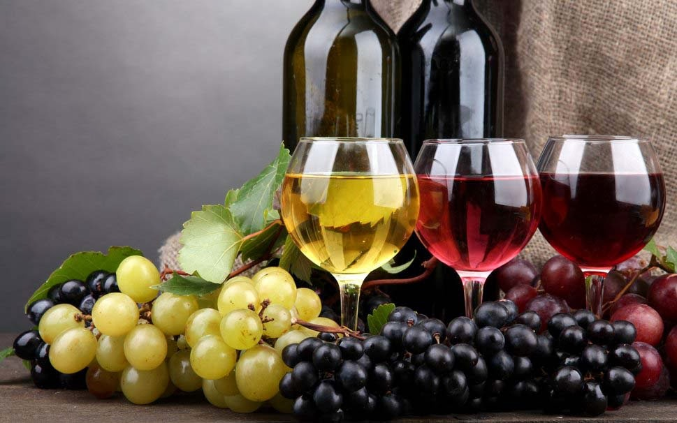 wine-from-vineyards-hd