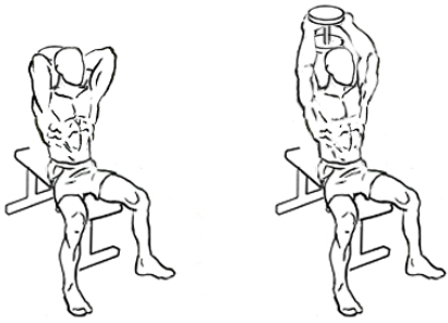 Dumbbell Overhead Triceps Extension Arms done right: a guide to proper ...