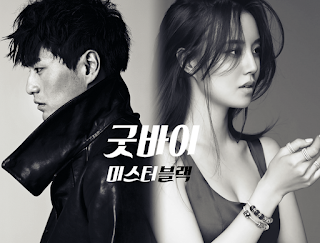 drama korea terbaru 2016 Goodbye, Mr Black