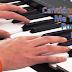 ♪♫ Canción Me Transformo ♪♫ - Cecilia Palafox, Rafael Fiocchi, Daiana da Silva