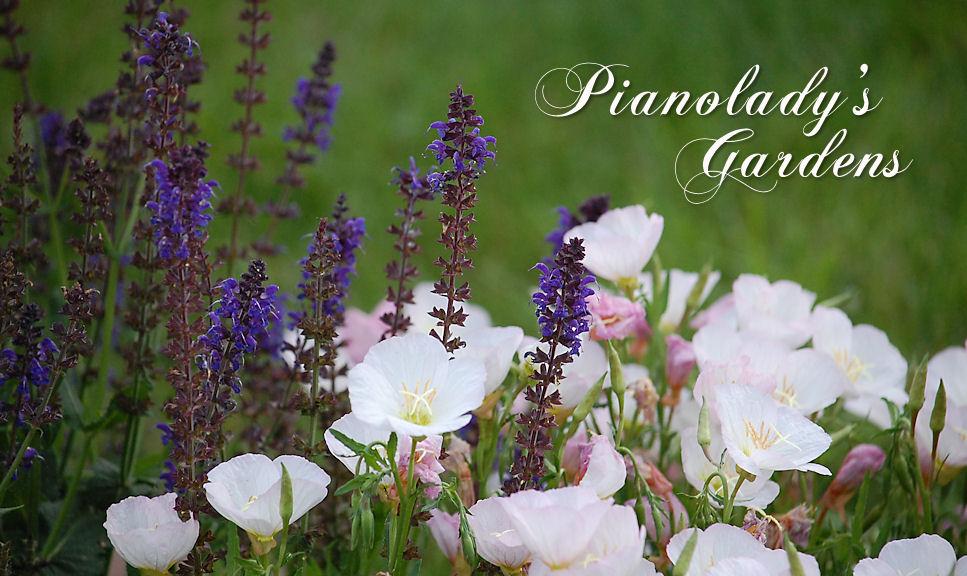 Pianolady's Gardens