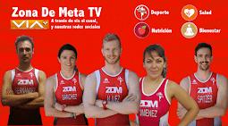 ZDM ¡En Televisión!
