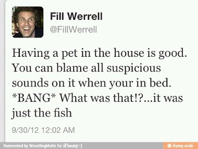 will ferrel tweet, pet in the house blame sounds, it was the fish