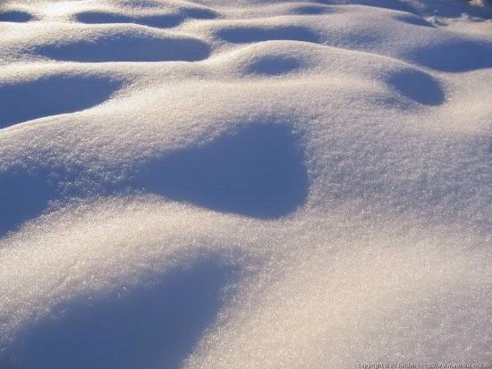 http://en.wikipedia.org/wiki/Snow