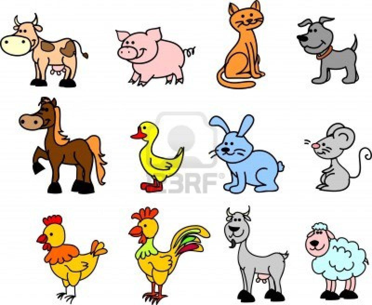 Fotografias de animales domesticos Fotografias y fotos  - animales domesticos imagenes