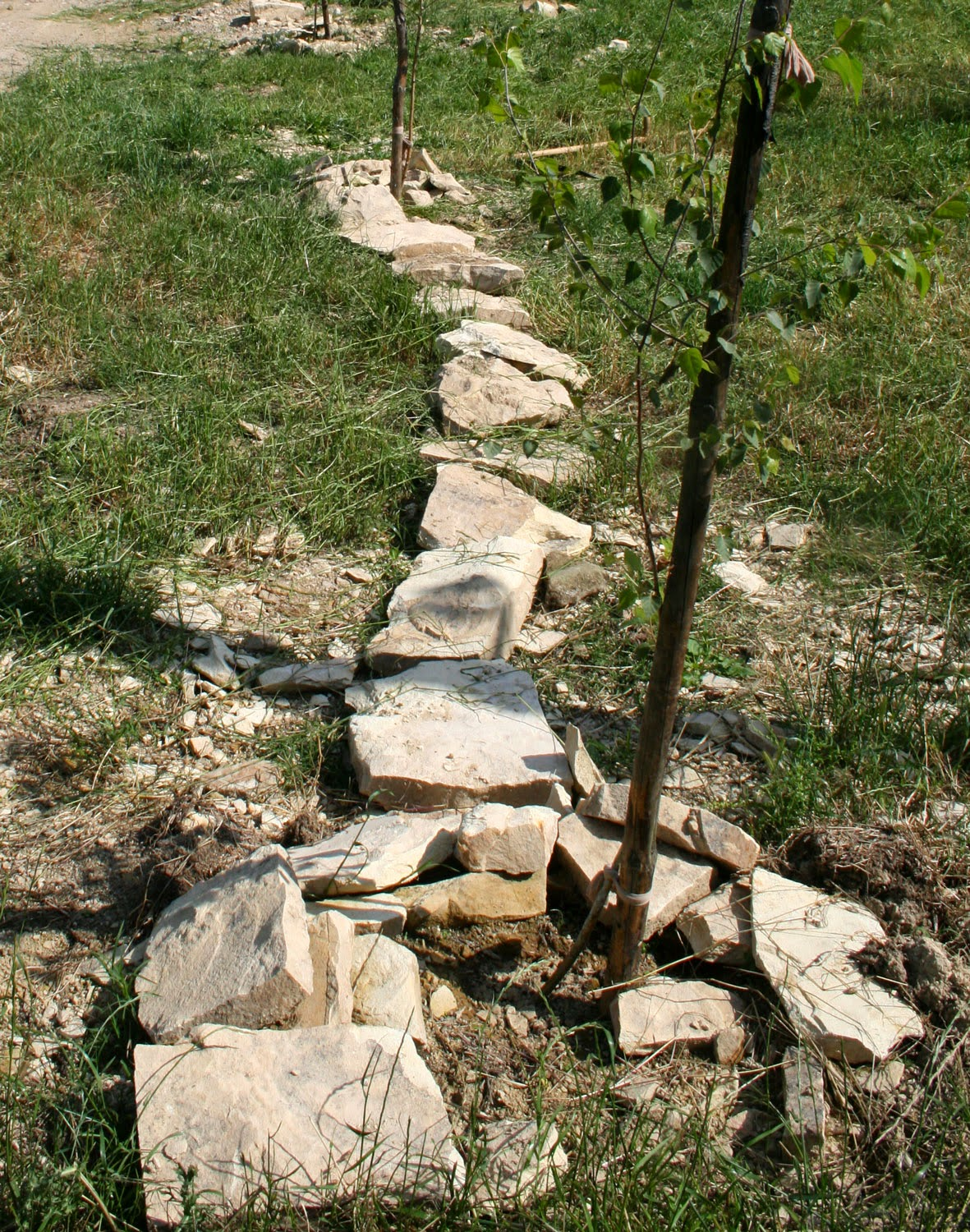 Stones lining the edge of the drive