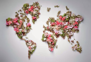 Flower The World