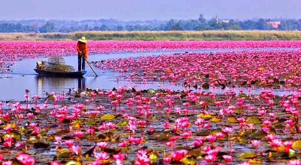knulla luleå göteborg thailand
