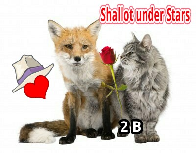 Shallot Fox and the CAT