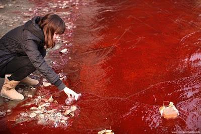 rió de sangre en china