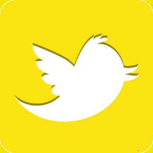 Saca partido a tu perfil profesional con Twitter