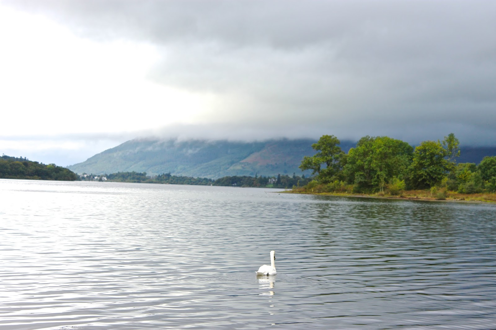The lake district, lake district, family first holiday, peace, stunning views, windermere, buttermere lake, swan