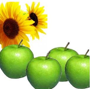 http://tanaman-manfaat.blogspot.com/2013/06/manfaat-dan-khasiat-apel-buah-apel.html