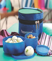Buy Tupperware Executive 4 Piece Lunch Box Set With Insulated Bag at Rs. 584 only