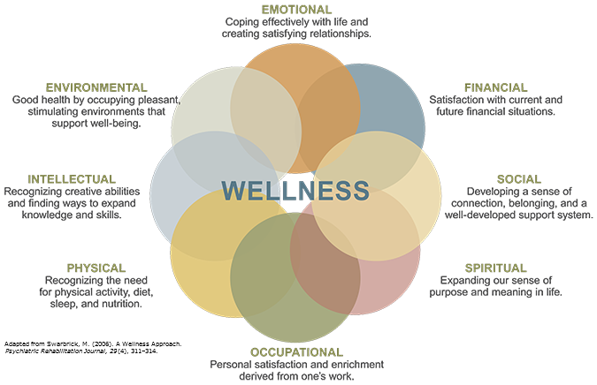 Definition Of Wellness