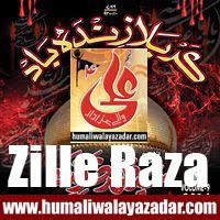 http://ishqehaider.blogspot.com/2013/11/zil-e-raza-nohay-2014.html