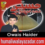 http://www.humaliwalayazadar.com/2014/10/owais-haider-nohay-2015.html