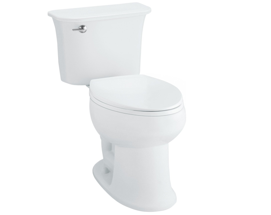 Everything Toilets: Sterling Stinson ADA All In One Review
