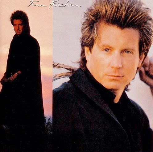Tim Feehan st 1987 aor melodic rock westcoast music blogspot albums bands