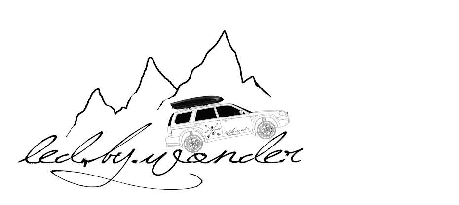 led by wonder