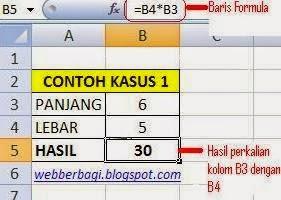 Tipe Data Microsoft Excel