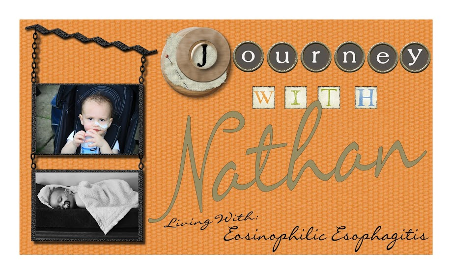 Journey With Nathan