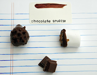 Chocolate truffle inspired color collection and recipe for chocolate hedgehogs
