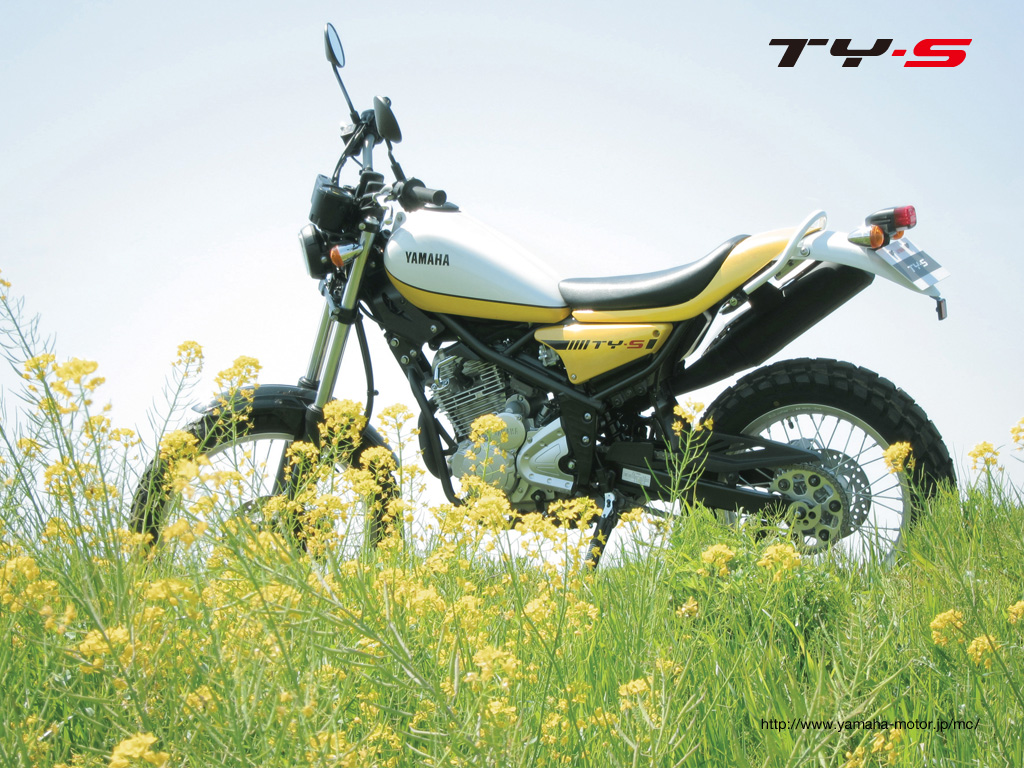 Alex Tartaglias Arai Sk 6 together with 300170Q furthermore Back Painted Glass likewise Product product id 228 besides Yamaha Tricker 250 Tricker Xg Ty S 2013. on 500 s f home designs