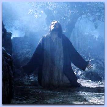 Bible - Page 2 Jesus-in-Gethsemane