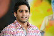 Naga Chaitanya photos-thumbnail-9