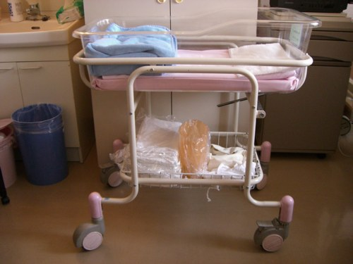 Bassinet Hospital