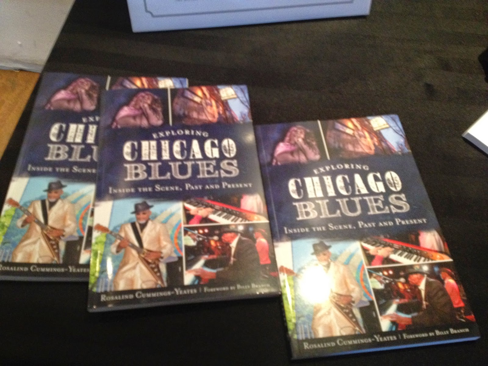 Exploring Chicago Blues Inside The Scene, Past and Present