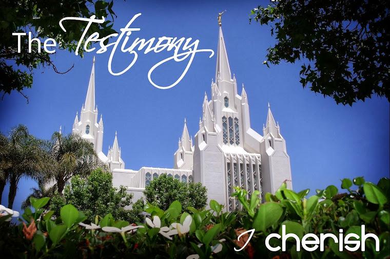 Testimony Snapshots