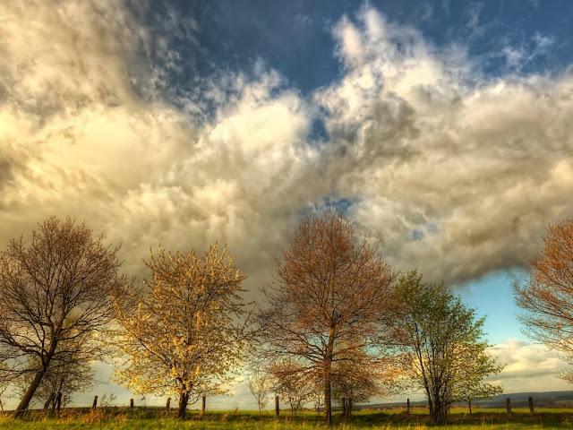 "<img src=""http://1.bp.blogspot.com/-B11eTGk9mDo/UqR_5YF4ZrI/AAAAAAAAEmg/lA5pSV2cWNY/s1600/dfgrr.jpeg"" alt=""Clouds wallpapers"" />"