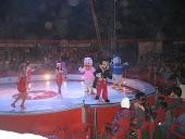 Parabéns Circo Mundial,e obrigado