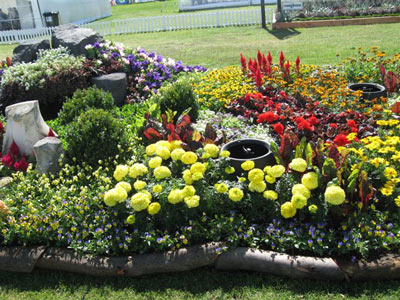 Small flower bed designs native home garden design for Garden flower bed ideas