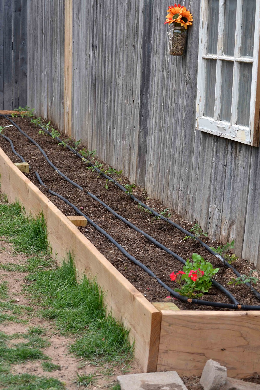 Babblings And More Square Foot Garden Planting And Irrigation