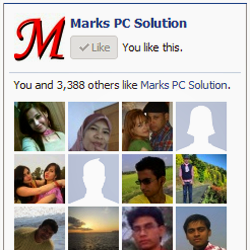 Facebook Like Box by Marks PC Solution