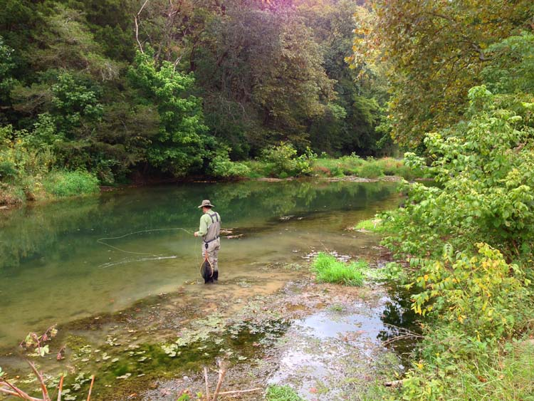 Chris zimmer fly fishing in virginia for Fishing in va
