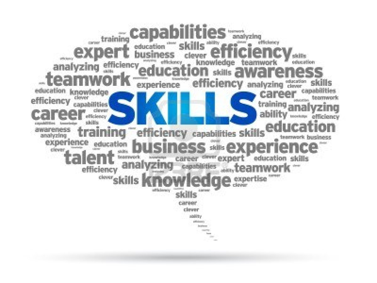skill skill development initiative scheme the person modi skill skill development initiative scheme
