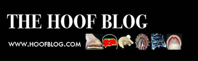 Fran Jurga`s Hoof Blog: News from Hoofcare + Lameness