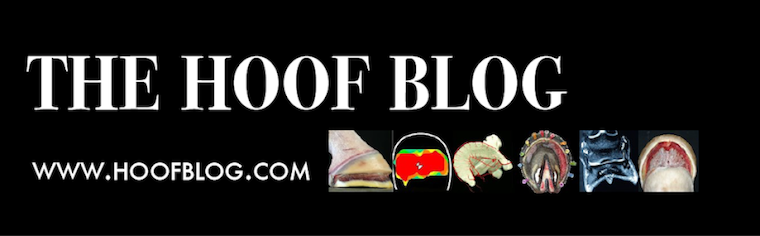 Fran Jurga`s Hoof Blog: News from Hoofcare + Lameness Journal