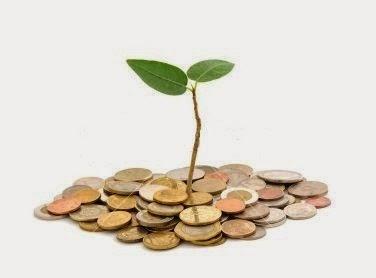 Administração Financeira da Empresa Rural