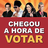 Votar The Voice Brasil 2013