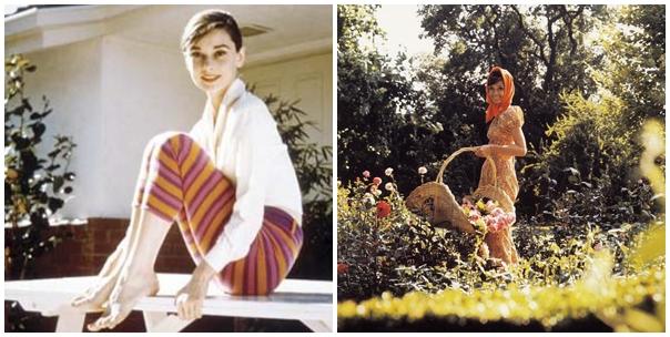 Audrey i jej codzienność