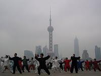 kung fu Vs wu su
