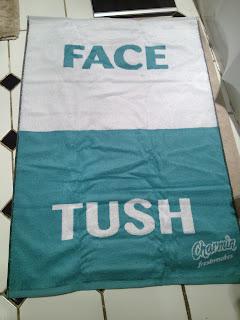 Charmin Freshmates Towel